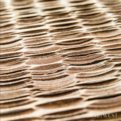 CARBON-Detail-Door-Modern-Contemporary-Texture-Luxury-800x800-2